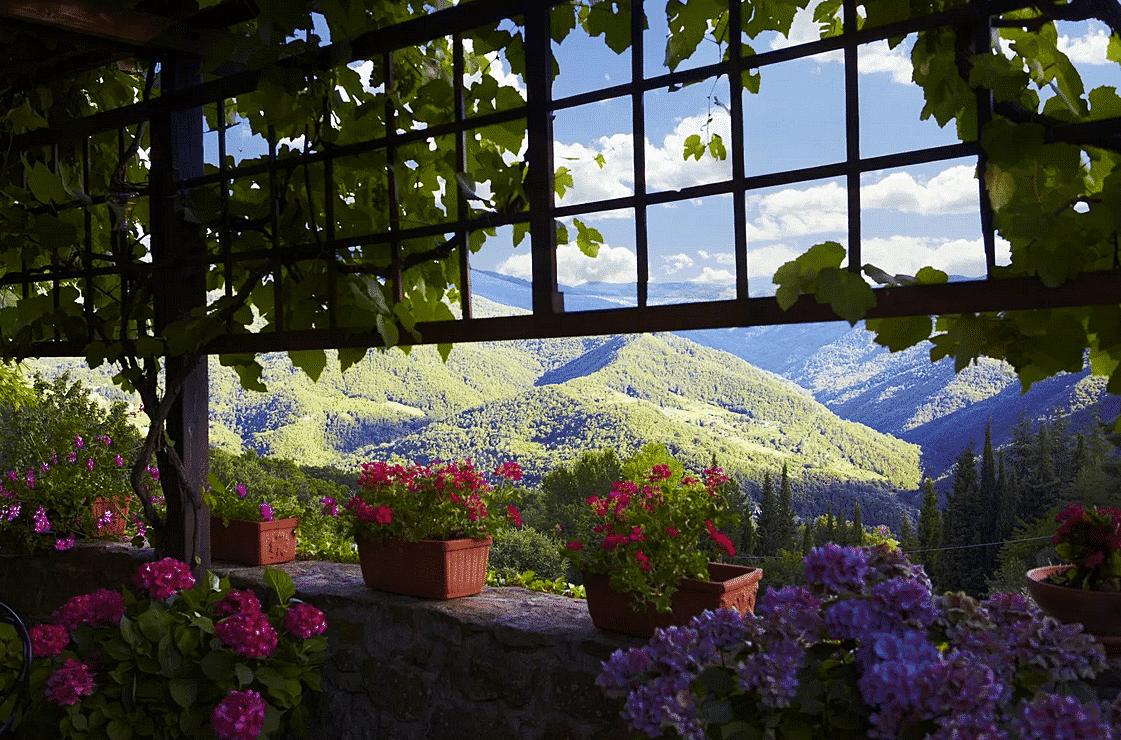 Londa – udsigt fra terrassen